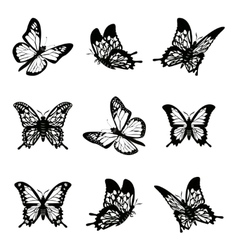 Butterfly of silhouette icon set vector image vector image