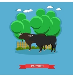 Concept poster of beef farm grazing cattle vector