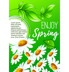 Spring flower poster for springtime holiday design vector