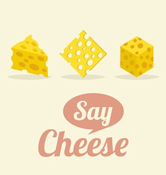 Different Shape of Cheeses vector image