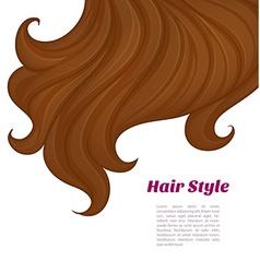 Beautiful brunette hair vector image