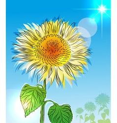 Hand drawn sunflower sketch vector