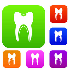 tooth set collection vector image vector image