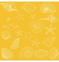 Seashells and starfish pattern vector