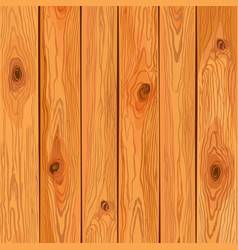 pine wood background vector image