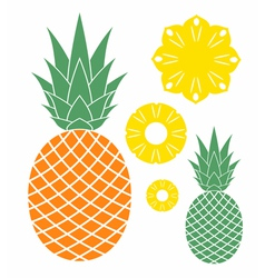 Pineapple vector
