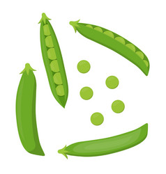 Set with green peas vector