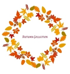 Autumn frame background vector