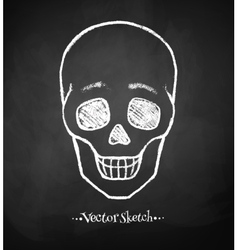 Chalkboard drawing of skull vector