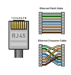 Ethernet connector pinout color code straight and vector