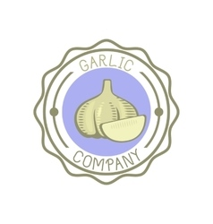 Garlic badge vector