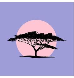 Silhouette of acacia tree in safari sunset vector