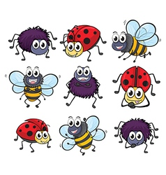 A spider a ladybug and a bee vector image vector image