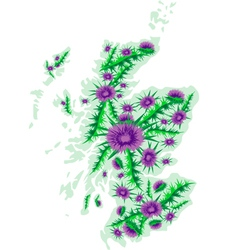image map of Scotland with thistle flowers vector image