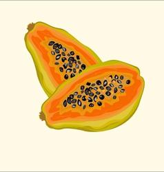 papaya vector image vector image