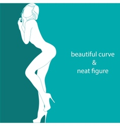 Beautiful curve and neat figure vector