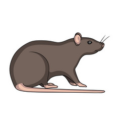 Rodent rat single icon in cartoon style for design vector