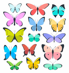 set of colored butterflies vector image vector image