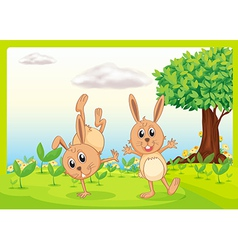 Dacing rabbits vector image