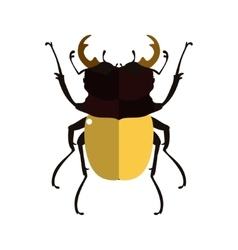 a stag beetle vector image vector image