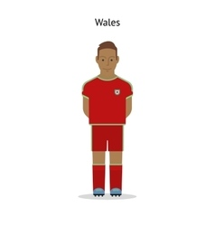 Football kit wales vector