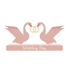 Wedding pink swans hold rings over white vector