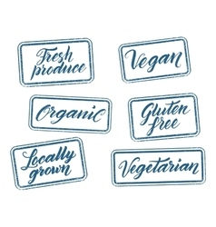 Healthy food stamps with hand drawn letterings vector