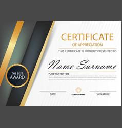Gold elegance horizontal line certificate vector