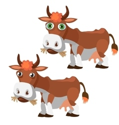 Two funny brown cow in cartoon style isolated vector