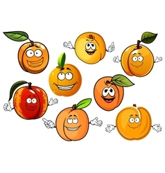 Cartoon peaches nectarines and apricots fruits vector