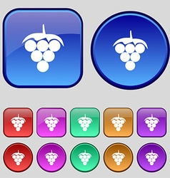 Grapes icon sign a set of twelve vintage buttons vector