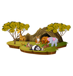 mountain scene with many animals vector image vector image