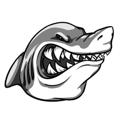 Shark mascot team label design vector