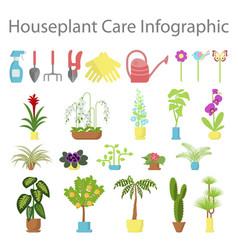 Window gardening ifographic elements vector