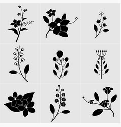 black and white flower with leaves vector image vector image