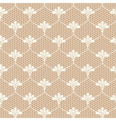Beige lace on brown background vector