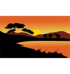 Landscape elephant of silhouette vector