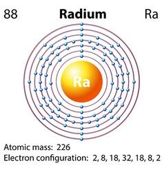 Diagram representation of the element radium vector image