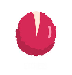 Lychees icon flat style vector