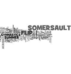 somersault word cloud concept vector image