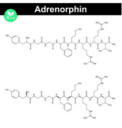Adrenorphin molecular structure vector