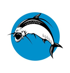 Tarpon fish jumping vector