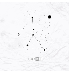Astrology sign Cancer on white paper background vector image