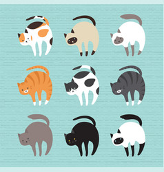 Set cute cats vector
