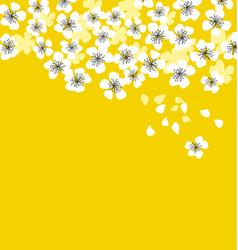 White sakura blossom on sunny yellow background vector