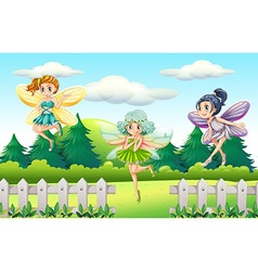 Three fairies flying in garden vector