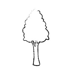 Tree for forest park and plant natural image vector