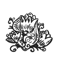 design element floral vector image
