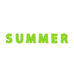 Word summer with leaves on a white vector
