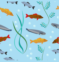 exotic tropical fish underwater ocean or aquarium vector image vector image